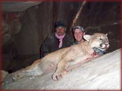 record book toms - Colorado mountain lion hunting