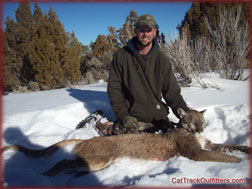 treed tom in Western Colorado on a guided mountain archery lion hunt