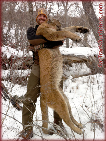 Colorado Big Game Hunts & Photos - Guided deer and mountain lion hunting in Colorado with Cat ...