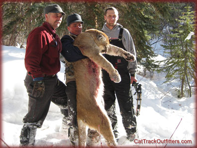 guided mountain lion hunts in Colorado, Wisconsin hunter on a big game hunt with Cat Track guides and outfitters