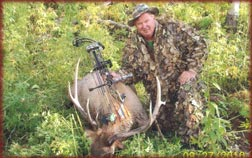 Colorado guided elk hunts