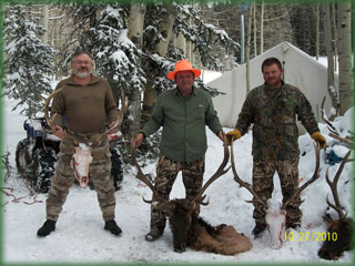 guided elk hunting in Western Colorado