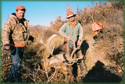 elk hunting in Western Colorado