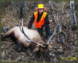 Guided Elk hunting in Colorado