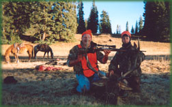 guided Colorado Elk hunting