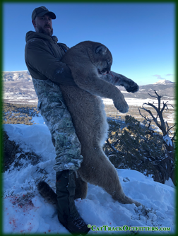 big game hunting - lion hunting in Western Colorado